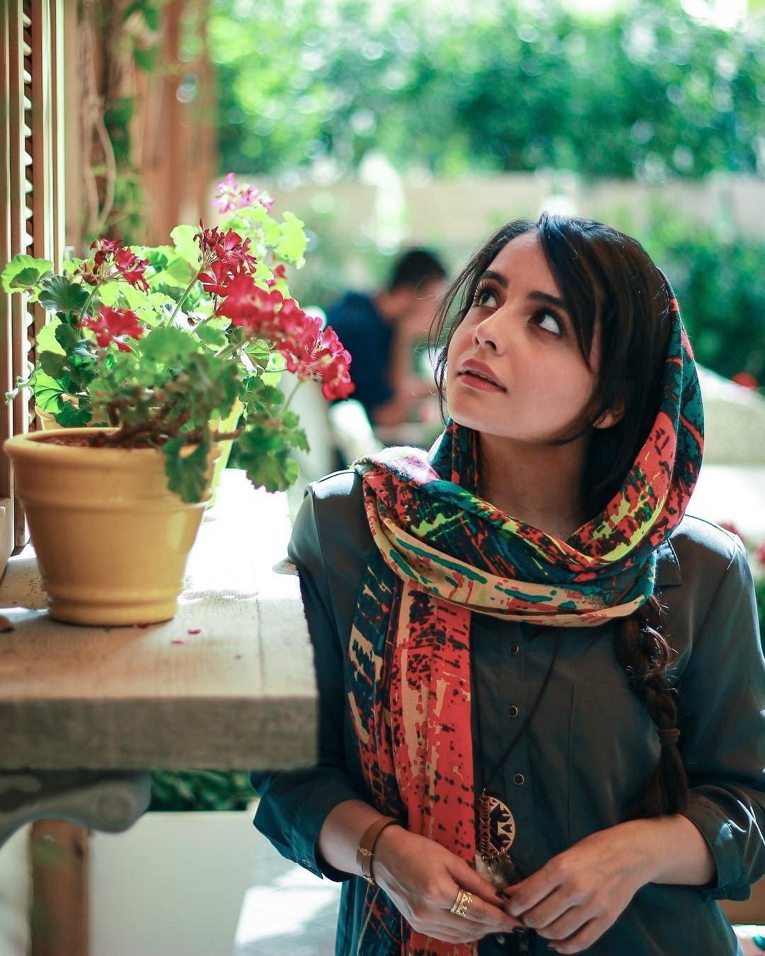 растения фото красивых персиянок известного